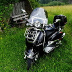 ...mein Harley-Windschild !